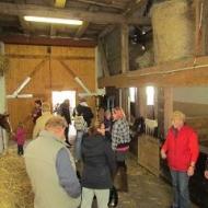 Der Röhlsche Hof - Bildungs- und Erlebnisbauernhof in Wallwitz in Sachsen-Anhalt - Brotbacktage 2013-3