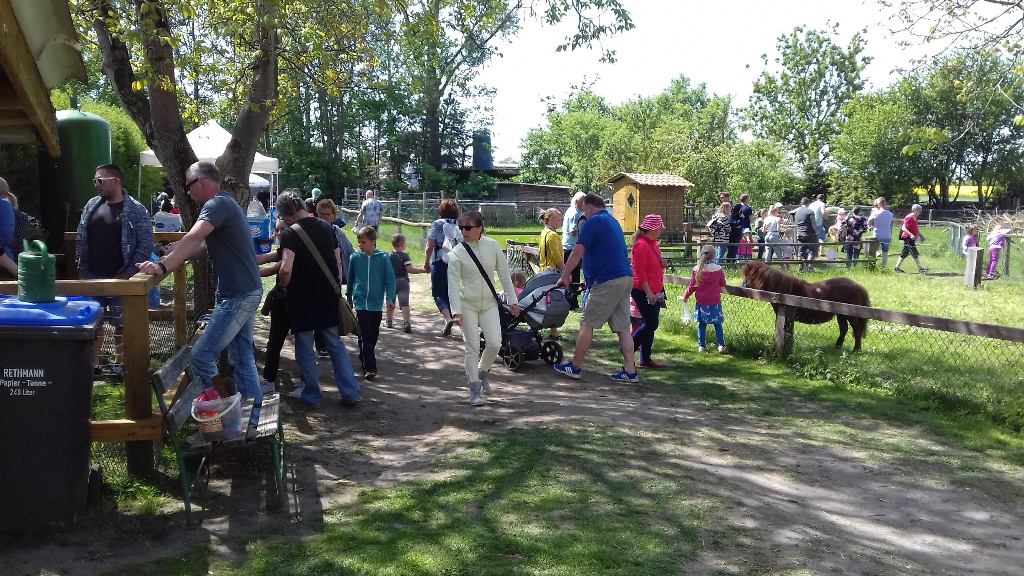 Der Röhlsche Hof - Bildungs- und Erlebnisbauernhof in Wallwitz in Sachsen-Anhalt - Brotbacktage 2019 3