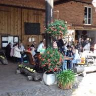 Der Röhlsche Hof - Bildungs- und Erlebnisbauernhof in Wallwitz in Sachsen-Anhalt - Brotbacktage 2019 2