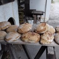 Der Röhlsche Hof - Bildungs- und Erlebnisbauernhof in Wallwitz in Sachsen-Anhalt - Brotbacktage 2019 4