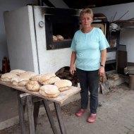 Der Röhlsche Hof - Bildungs- und Erlebnisbauernhof in Wallwitz in Sachsen-Anhalt - Brotbacktage 2019