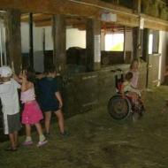 Der Röhlsche Hof - Bildungs- und Erlebnisbauernhof in Wallwitz in Sachsen-Anhalt - Kindertage 15