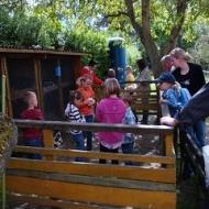 Der Röhlsche Hof - Bildungs- und Erlebnisbauernhof in Wallwitz in Sachsen-Anhalt - Kindertage 16