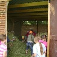 Der Röhlsche Hof - Bildungs- und Erlebnisbauernhof in Wallwitz in Sachsen-Anhalt - Kindertage 7