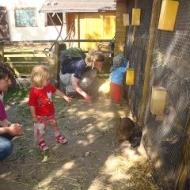 Der Röhlsche Hof - Bildungs- und Erlebnisbauernhof in Wallwitz in Sachsen-Anhalt - Spiel- und Spaßnachmittag 2009-6