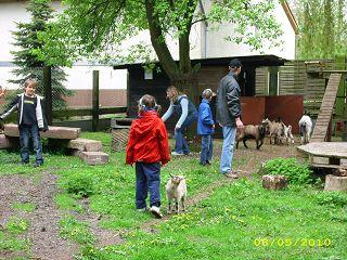 Der Röhlsche Hof - Bildungs- und Erlebnisbauernhof in Wallwitz in Sachsen-Anhalt - Spiel- und Spaßnachmittag 2010-2