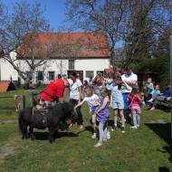 Der Röhlsche Hof - Bildungs- und Erlebnisbauernhof in Wallwitz in Sachsen-Anhalt - Spiel- und Spaßnachmittag 2016 DSCN0491
