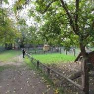 Der Röhlsche Hof - Bildungs- und Erlebnisbauernhof in Wallwitz in Sachsen-Anhalt - Gelaende 3